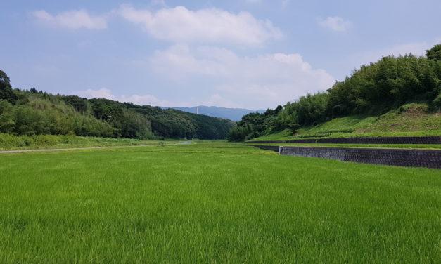 Koga (Fukuoka)