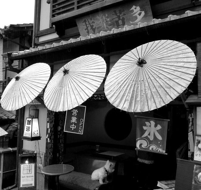 Détour par Kyoto : le Palais Impérial et Gion
