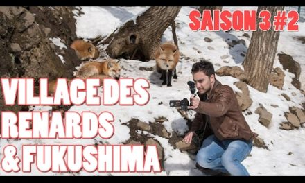 ICHIBAN JAPAN – Saison 3 Épisode 2 : Village des Renards et Fukushima